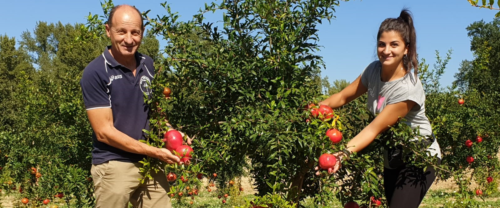 The offer expands with fruit trees from Italy